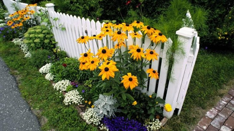 flowers-and-fence