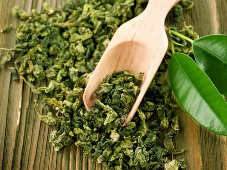hojas-de-te-verde