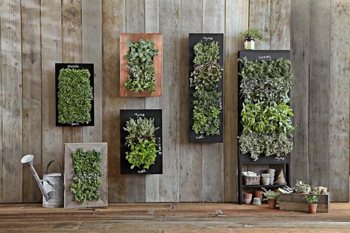 jardines verticales estilo color