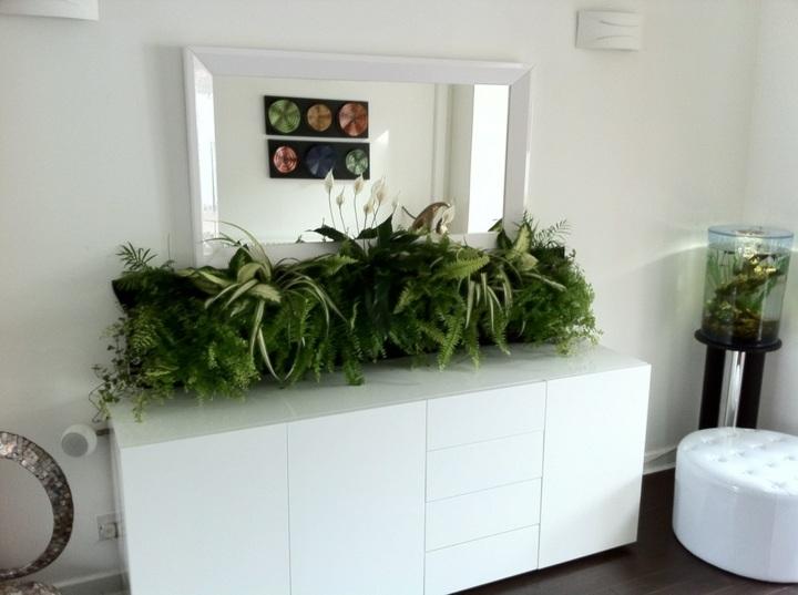 modelo-jardin-rectangular-alargado