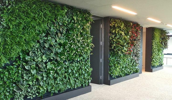 pasillos-paredes-decoradas-efectos