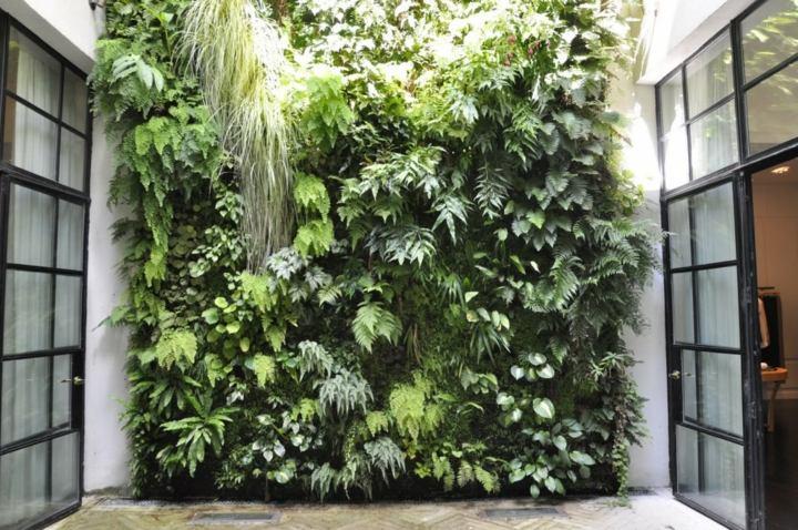 patio-interior-decorado-plantas