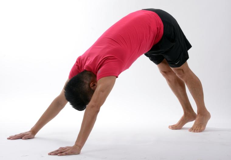 posturas de yoga-nombre-adho-mukha