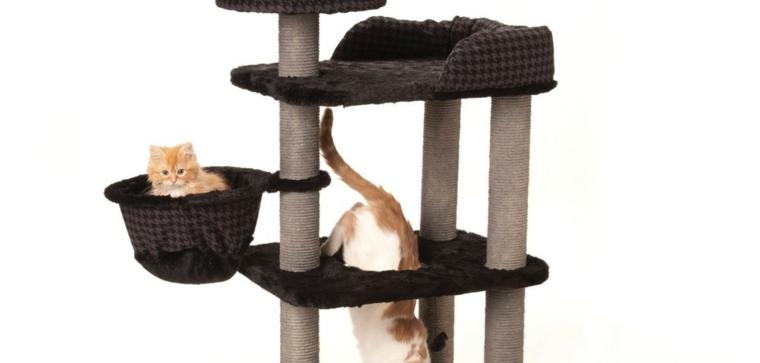 arbol gato-casero-rascadores