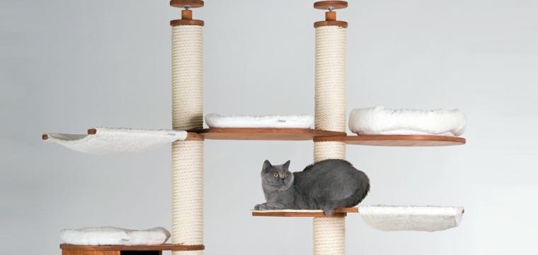 arbol gato-domestico-moderno-original