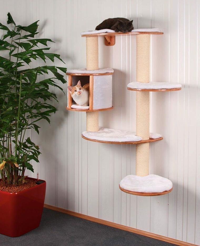 arbol para gatos-paredes-casa
