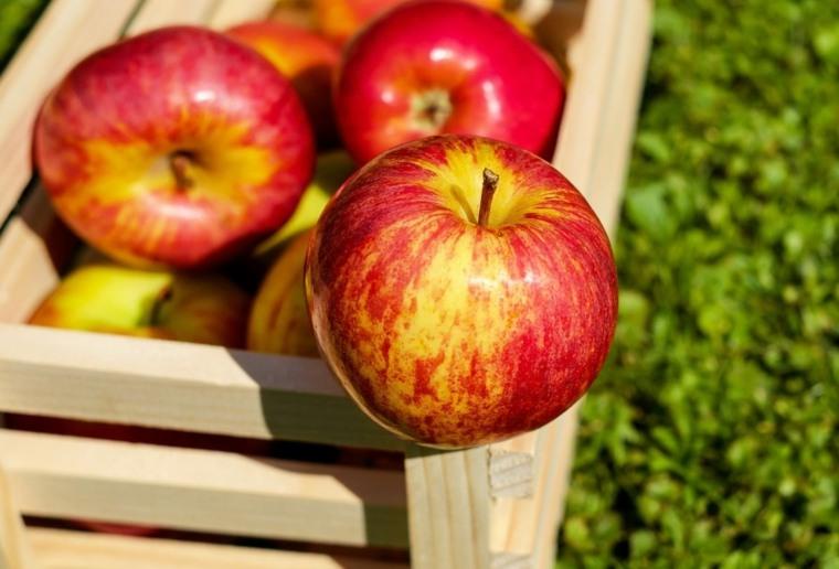 comida saludable-higado-manzana