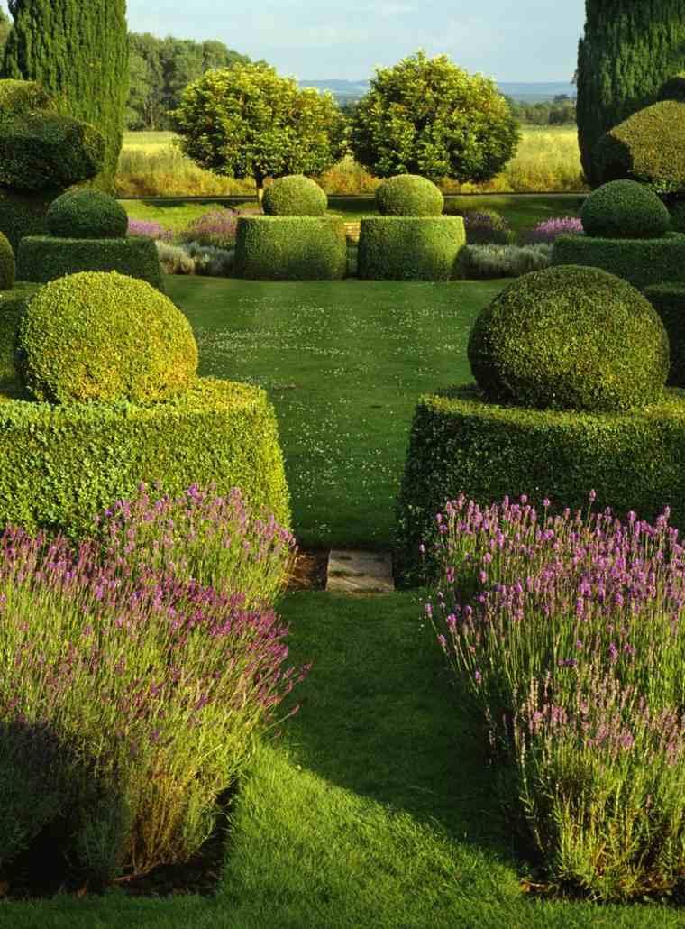 vallas de setos y arbustos