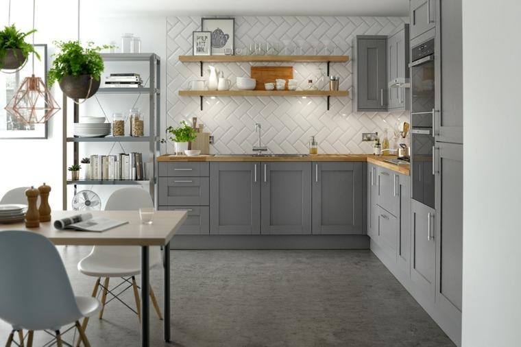 diseños de cocinas-opciones-muebles-color-gris