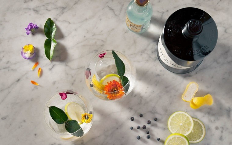 gin tonic-alcohol-cocteles