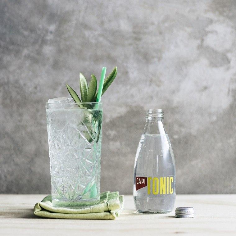 gin-tonic-opciones-recetas-cocteles-ideas