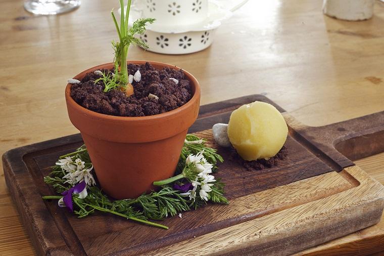 huerto en casa-zanahorias-maceta