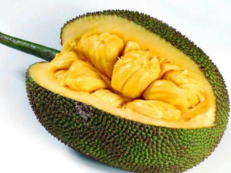 jackfruit-cuarto-cortado