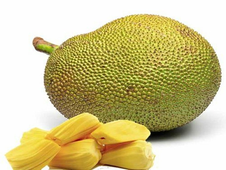 jackfruit-entero-y-bulbos
