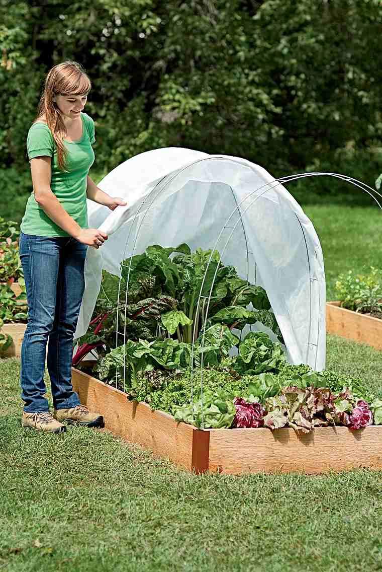 jardines de casas-consejo-1-empieza-jardin-pequeno