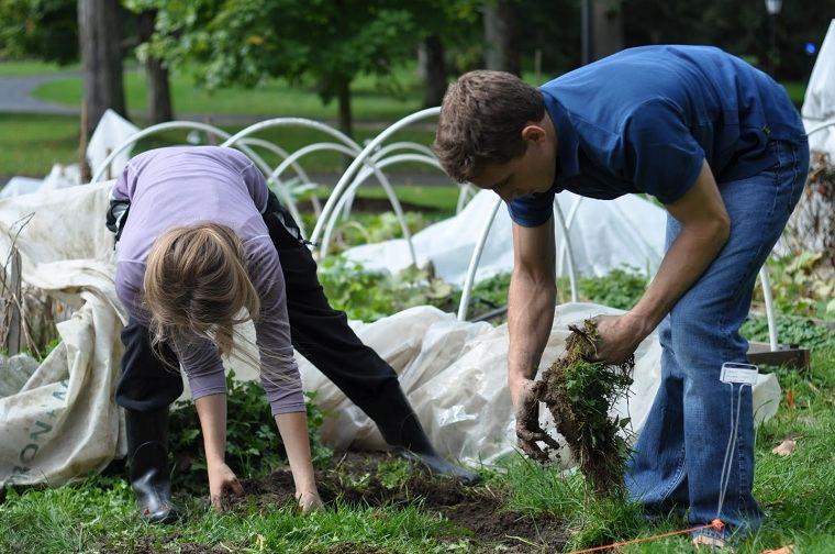 jardines-de-casas-consejo-2-limpie-suelo