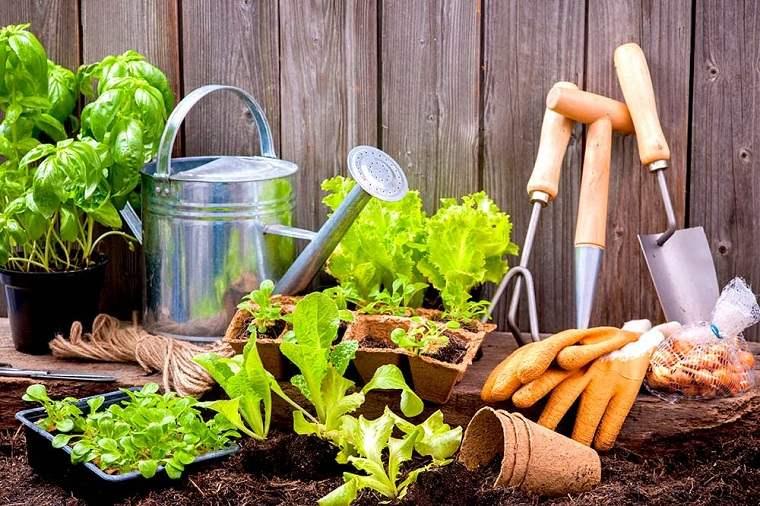 jardines-de-casas-materiales-opciones-estilo