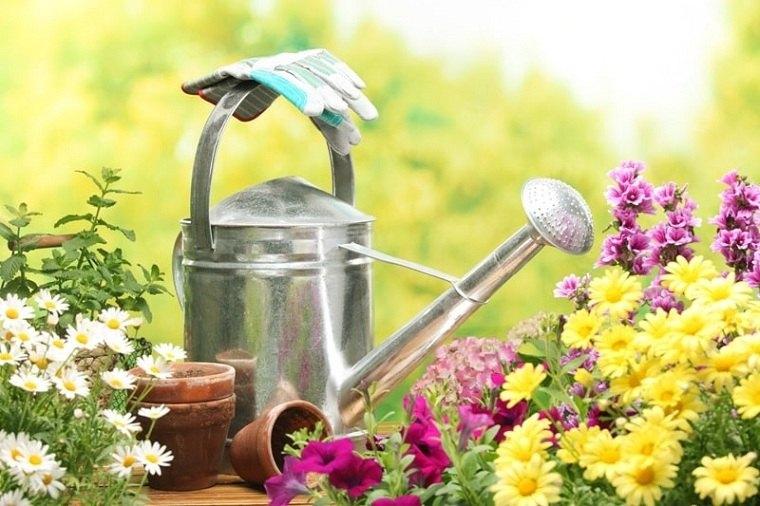 jardines de casas-materiales-opciones-flores