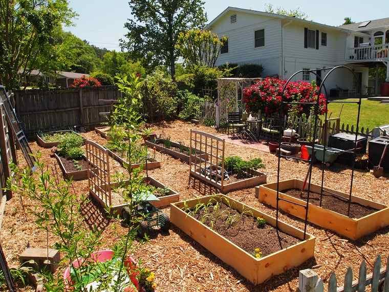 jardines de casas-opciones-estilo-jardineria