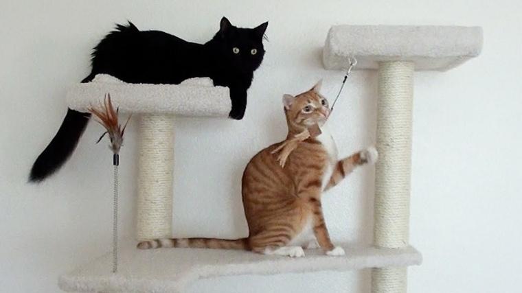 muebles de madera-rascador-gatos