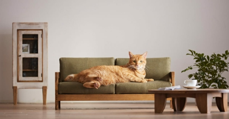 muebles para gatos-originales-modernos