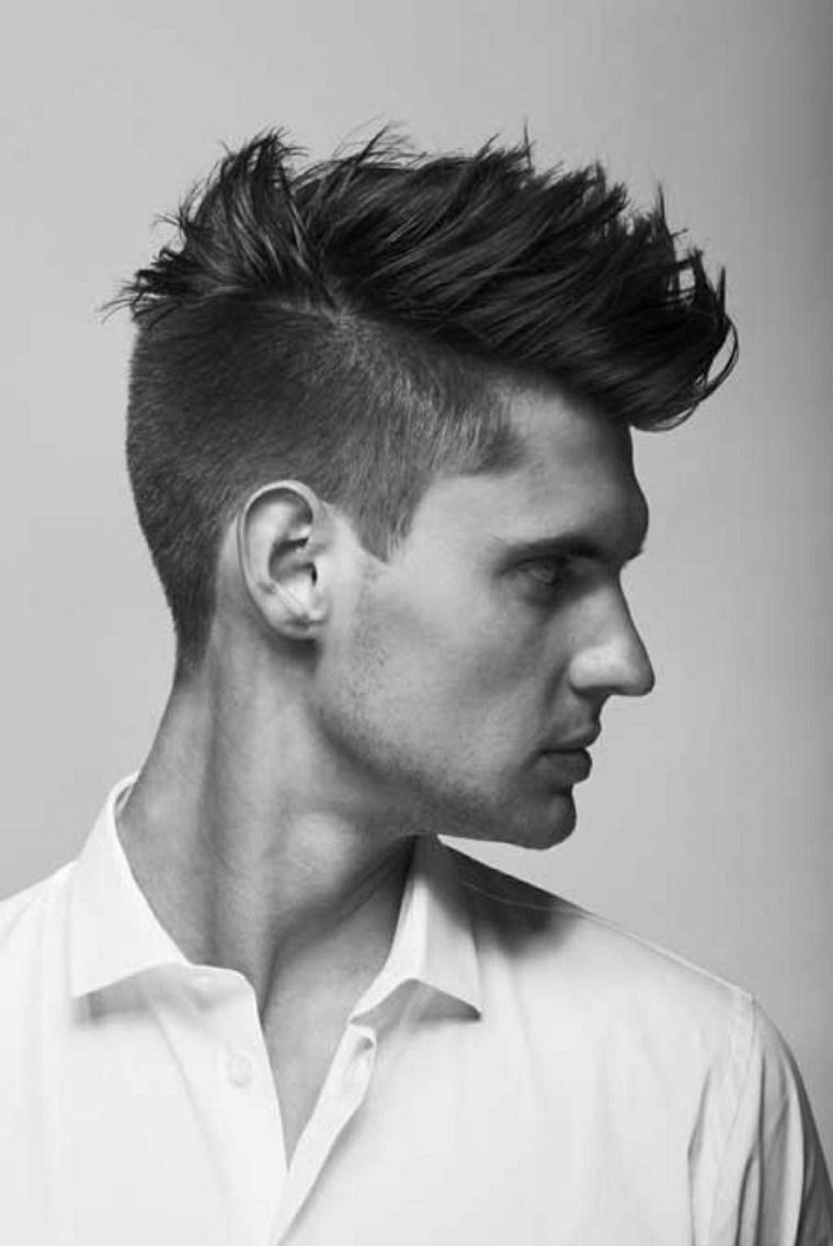 peinados modernos para hombres-hipster-cresta