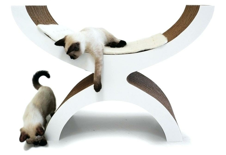 rascador de gatos-domesticos-moderno