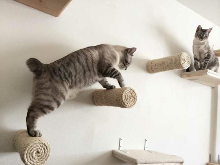 torre para gatos-moderna-original-pared