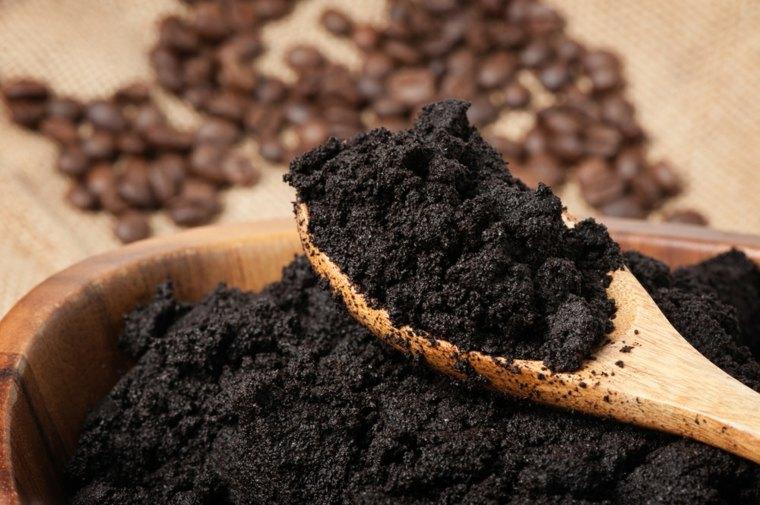 abono cucharas compactas cafe