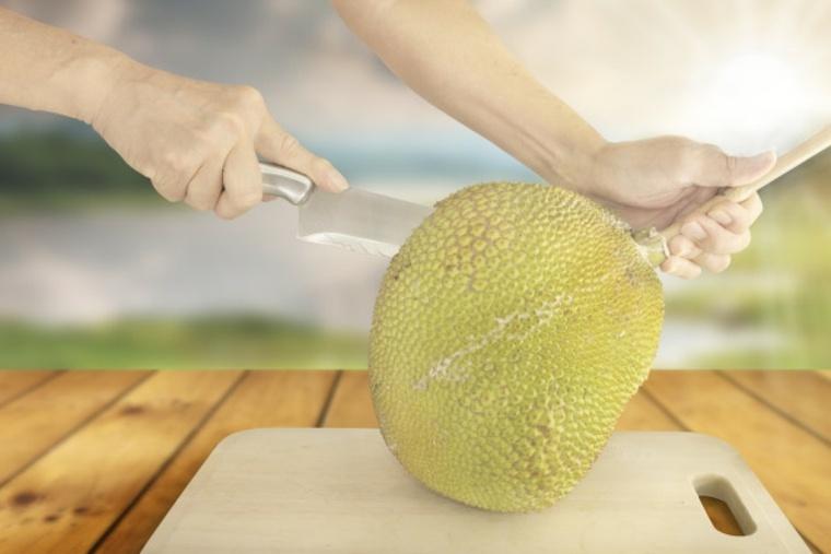 el jackfruit se originó en el sur de la India