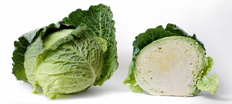 alimentos-vegetales-repollo