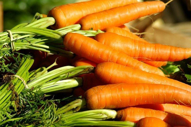 beneficios de la zanahoria-cultivo-casa