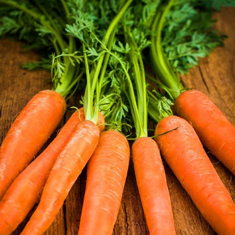 beneficios de la zanahoria-ensaladas