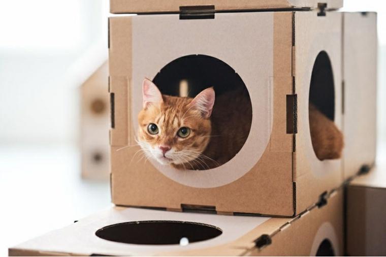 cajas-carton-casas-gatos