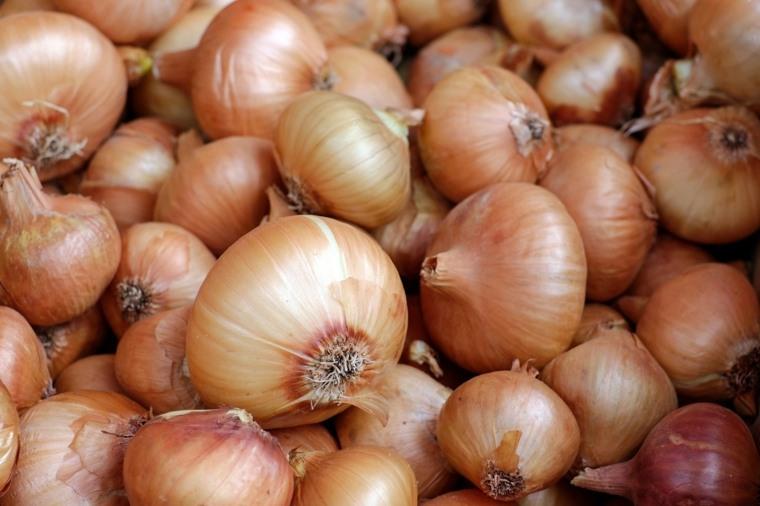 cebolla propiedades-beneficiosas-cuerpo