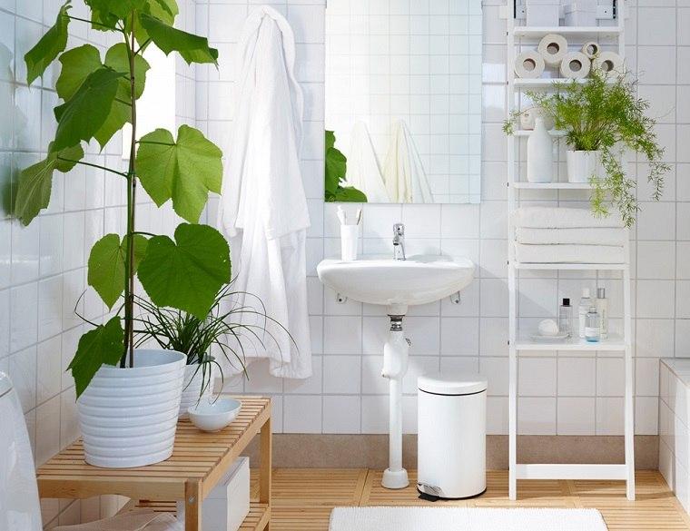 especias de plantas-bano-opciones-ideas