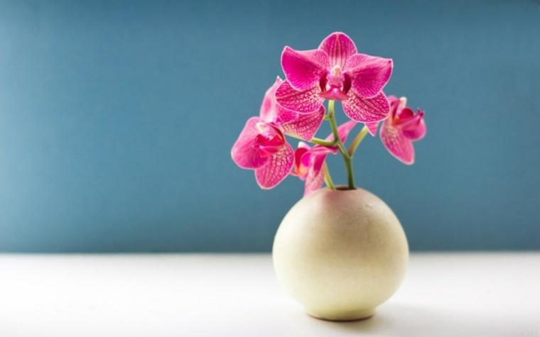 flores naturales-jarrones-modernos-decorar