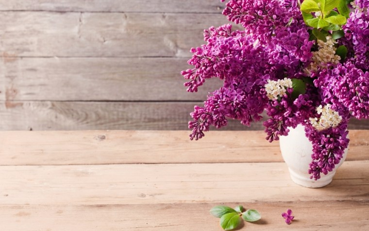 flores secas-naturales-jarrones-modernos