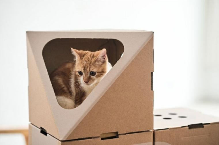 ideas-frescas-cajas-pequeñas