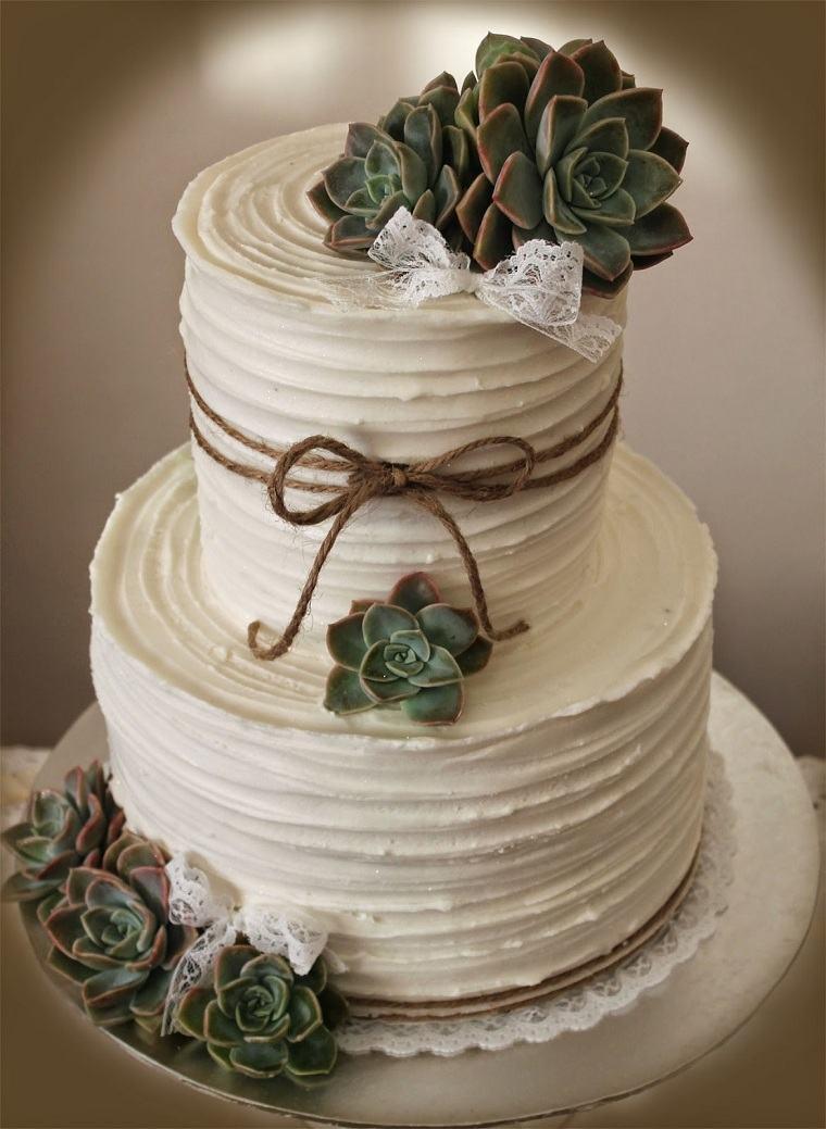 pastel-rustico-plantas-suculentas
