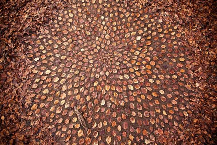 que es una mandala-hojas