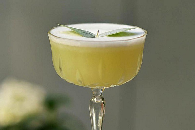 recetas-de-cocteles-hierbas-eucalipto-martini