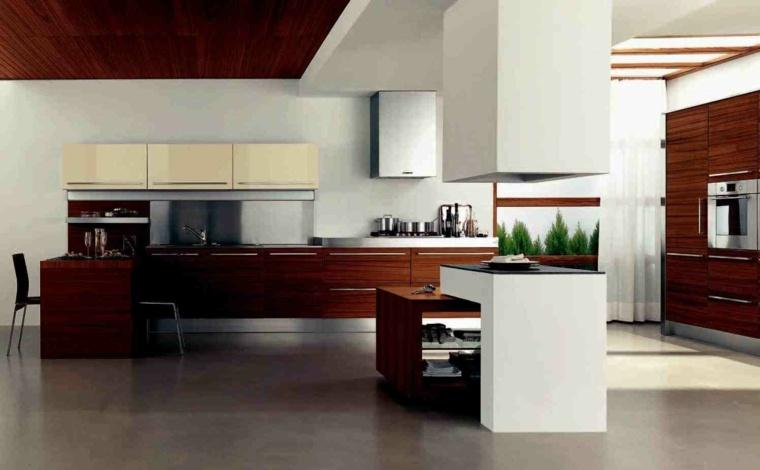 salas modernas-cocinas-asiaticas