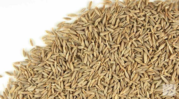 semillas-de-comino