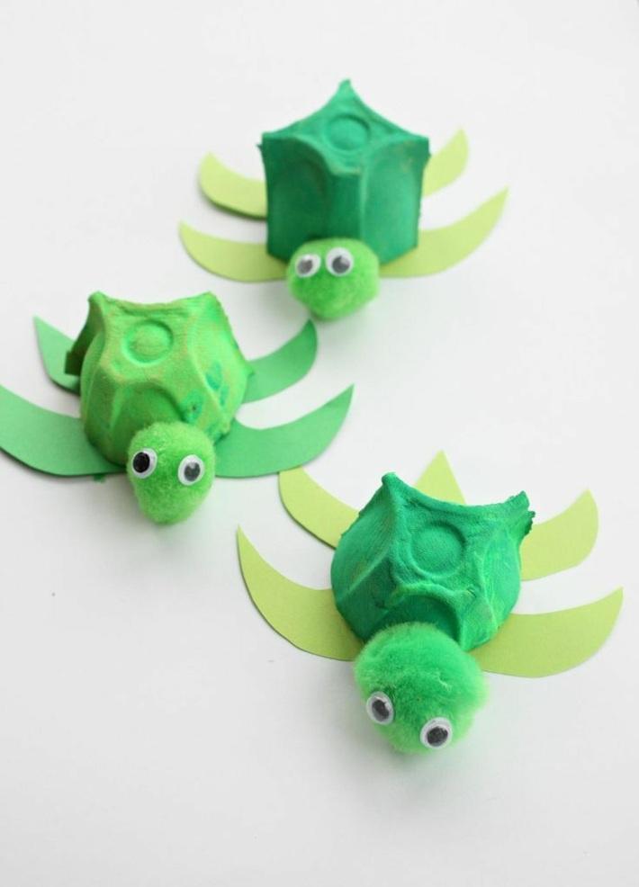 tortugas-pequenas-nadando-casa