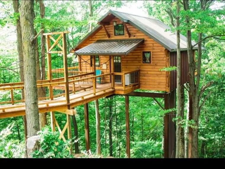 casa de lujo en los árboles