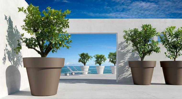 exteriores de casas-macetas-modernas