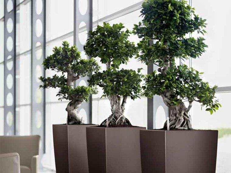 jardineras de piso-modernas-elegantes-decorar