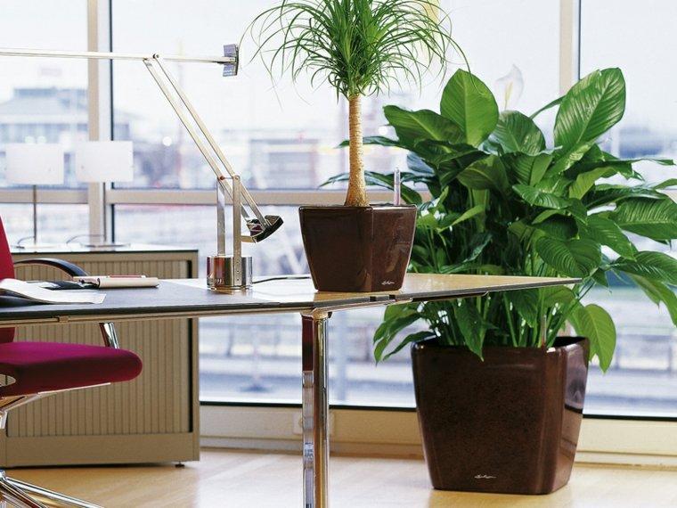 jardineras interiores-decorar-moderna