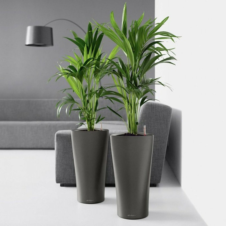jardineras interiores-modernas-elegantes-decorar